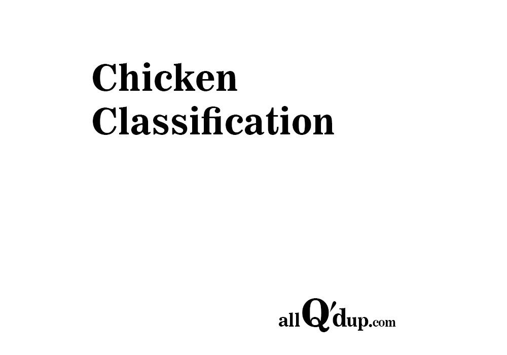 Chicken Classification